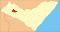 Senador Rui Palmeira.png