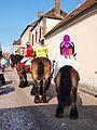 Sergines-FR-89-carnaval 2017-chevaux-11.jpg