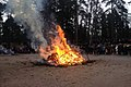 Seurasaari on 4th April 2015 Easter bonfire.jpg