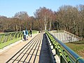 Severn Valley Country Park - view on footbridge - geograph.org.uk - 705158.jpg