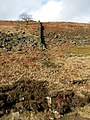 Shittern Clough Northern Side Bank with Boundary Wall - geograph.org.uk - 626533.jpg
