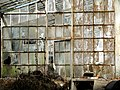 Sintra - Quinta da Regaleira - Greenhouse.jpg