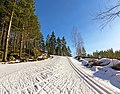 Skiing track uphill.jpg