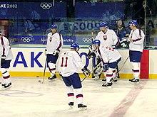 e17473d487213 Slovenské národné hokejové mužstvo počas kvalifikačného turnaja na ZOH 2002  v Salt Lake City v USA