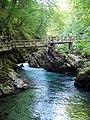 Slovenia - Gole di Vintgar (11732419766).jpg