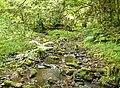 Small stream - geograph.org.uk - 1365088.jpg