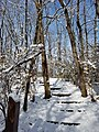 Smith Nature Park and Slyh Run (31518278542).jpg