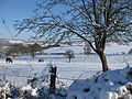 Snowy pastures - geograph.org.uk - 1652636.jpg