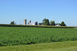 Farm northeast of Fletcher