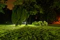 Sollbrüggenpark bei Nacht DSC 0902.JPG