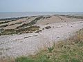 Solway shore at Powillimount - geograph.org.uk - 383805.jpg