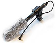 Esempio di microfono con antivento.