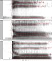Spectrograms of syllables dee dah doo.png