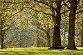 Spring in London (7154097543).jpg