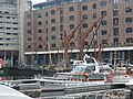 St Katharine's West Dock 8549.jpg