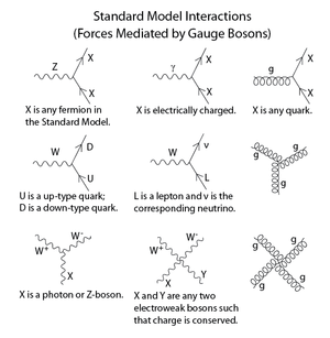 Standard Model - The above interactions form the basis of the standard model. Feynman diagrams in the standard model are built from these vertices. Modifications involving Higgs boson interactions and neutrino oscillations are omitted. The charge of the W bosons is dictated by the fermions they interact with; the conjugate of each listed vertex (i.e. reversing the direction of arrows) is also allowed.