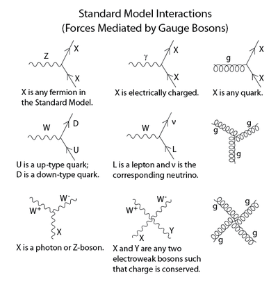Model feynman diagrams in the standard model are built from these