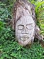 Starr-110218-1624-Arachis pintoi-habit with wood carving-Ulana St Makawao-Maui (24781012510).jpg
