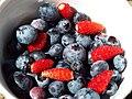 Starr-130818-0472-Vaccinium hybrid-Southern Highbush blueberries with alpine strawberries-Hawea Pl Olinda-Maui (25259929535).jpg