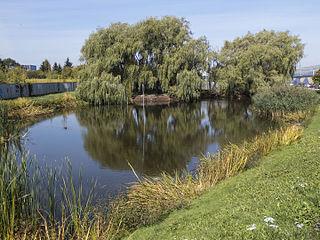 A pond in Warsaw, Poland, Włochy district