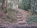 Steps to footpath gate - geograph.org.uk - 1183002.jpg