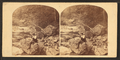 Stereoscopic views of Wissahickon Creek, Philadelphia, from Robert N. Dennis collection of stereoscopic views.png