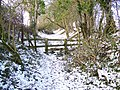 Stile, Bishopstone Hollow - geograph.org.uk - 1653539.jpg
