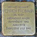 Stolperstein H. Freymann Esch-Alzette, 119 rue de l'Alzette 01.jpg