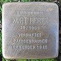 Stolperstein Kurt Hertz in Beckum.nnw.jpg