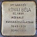 Stolperstein für Bela Ronai (Budapest).jpg