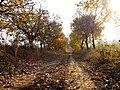 Strășeni District, Moldova - panoramio (10).jpg