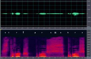 Strč prst skrz krk - Waveform and spectrogram for the Czech expression.