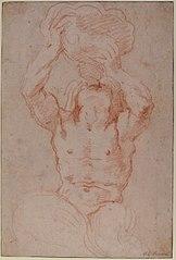 Anatomical Studies (drawing by Gianlorenzo Bernini)