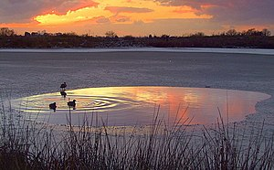 Bedfords Park - Image: Sunset over Bedfords Park pond geograph.org.uk 1110486
