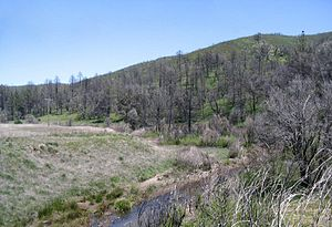 Sweetwater River (California) - The river's upper reaches near State Route 79