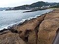 TW 台灣 Taiwan 新台北 New Taipei 萬里區 Wenli District 野柳地質公園 Yehli Geopark August 2019 SSG 164.jpg