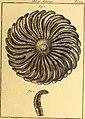 Tableau encyclopédique et méthodique des trois règnes de la nature (1791) (14581422380).jpg