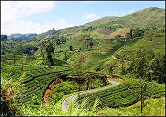 Sri Lanka Railways - Scenery seen from hill-country Badulla-Colombo railway line