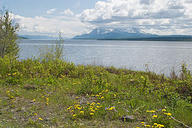 Image illustrative de l'article Lac Teslin