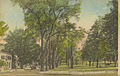 The Amherst Common Looking South, Amherst, Mass. (12659374035).jpg