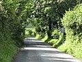 The Ridgeway - geograph.org.uk - 1413251.jpg