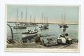 The Sponge Fleet, Nassau, B. I (NYPL b12647398-62408).tiff