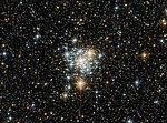 The Toucan and the cluster (30805354686).jpg