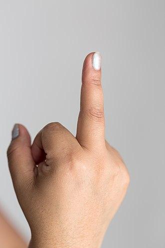 The finger - The finger