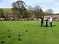 The green at Gala Waverley Bowling Club - geograph.org.uk - 781225.jpg