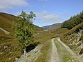 The track in Gleann an t-Slugain - geograph.org.uk - 492237.jpg
