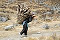 This woman brings firewood in the village Khare. - panoramio.jpg