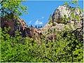 Through the Trees 2, Zion NP 4-30-14ka (14434781443).jpg