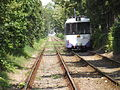 Timişoara tram 4.JPG