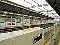 Tokyu Fujigaoka Station Platform 02.jpg